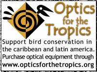 Optics for the Tropics advert small
